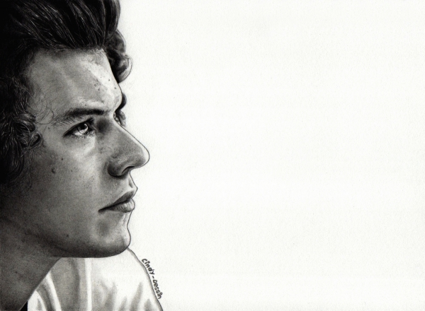 comment dessiner harry styles